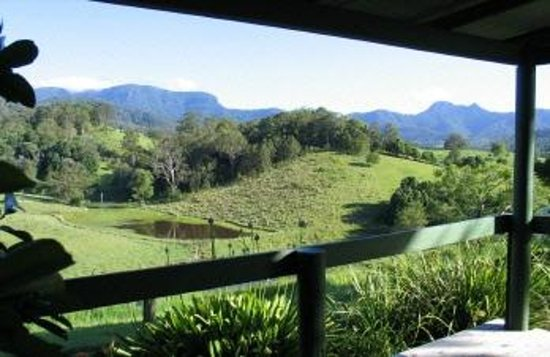 Upper Crystal Creek, Australia:                   View from Gazebo at Hillcrest Mt Warning View Retreat