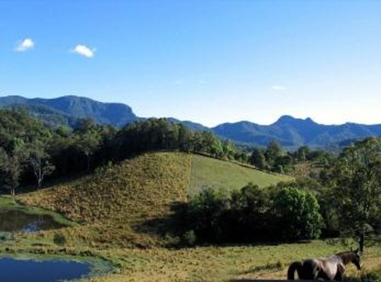 Upper Crystal Creek, Australia:                   View from Hillcrest Mt Warning View Retreat