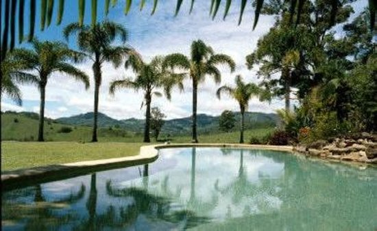 Upper Crystal Creek, Australia:                   Pool at Hillcrest Mt Warning View Retreat