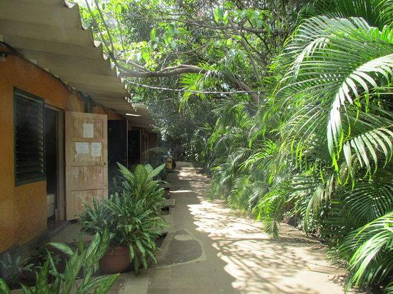 Hotel Los Felipe:                   Die Zimmer befinden sich im länglichen Gebäude (links), rechts davon ist der P
