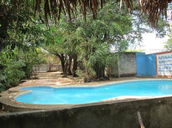Hotel Los Felipe:                   Pool