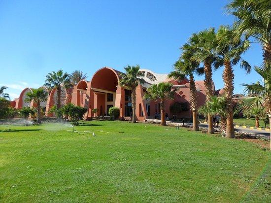 Palmyra Resort :                   Outside