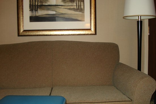 Embassy Suites by Hilton Raleigh - Crabtree: sofa