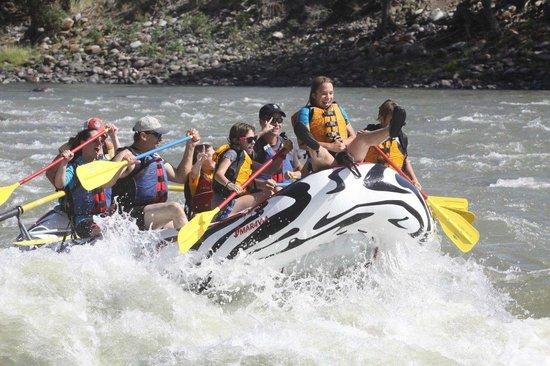 Wild West Rafting: Wild West's Zebra Raft