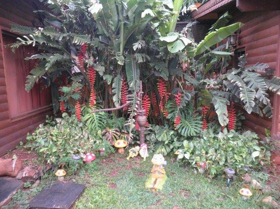 Petit Hotel Si Mi Capitan: Jardines