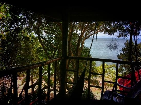 Jungle Hill Bungalow : view from bungalow porch