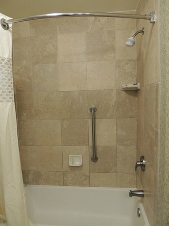 Hampton Inn & Suites Savannah Historic District: nice shower