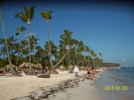 Be Live Collection Punta Cana: Plage