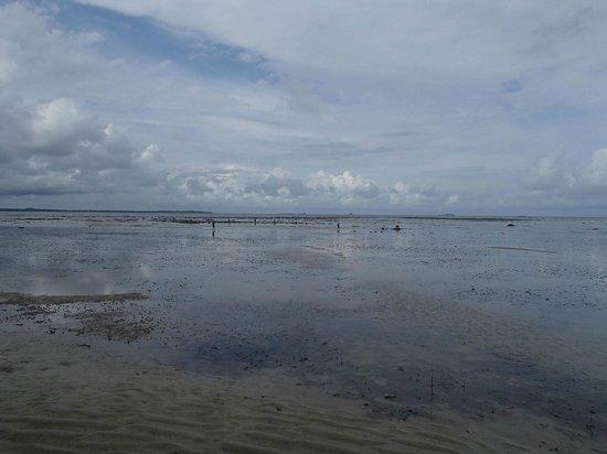 Loola Adventure Resort:                   Beach at low tide