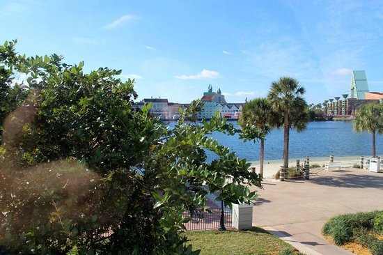 Disney's Beach Club Resort:                   view out the king bedroom
