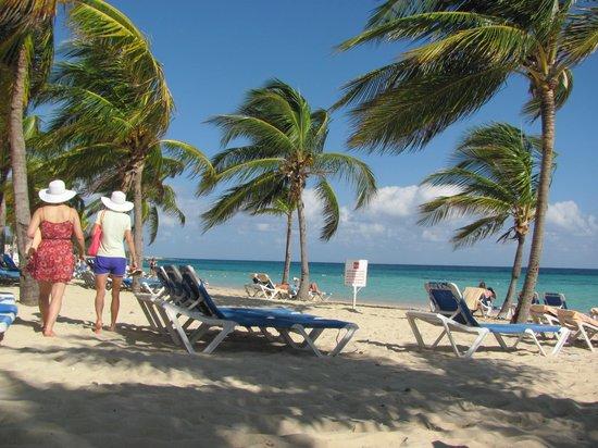 Hotel Riu Ocho Rios:                   Perfect  Beach Plenty Of Shade & Chairs