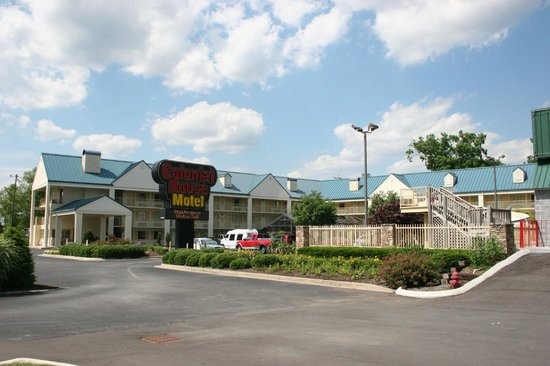 hotels in pigeon forge tenn