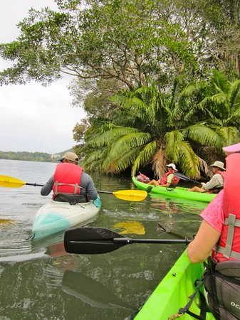 Gamboa Rainforest Resort: Kayaking on Nearby Lake