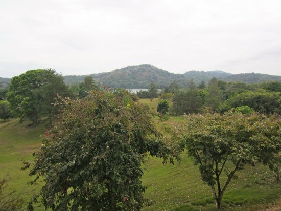 Gamboa Rainforest Resort: View From Hotel