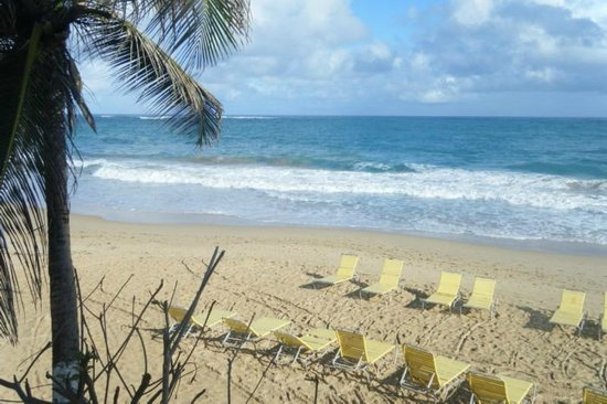 Atlantic Beach Hotel : hotel beach