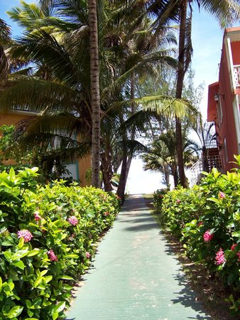 Parador Villas del Mar Hau:                   Trails and gardens
