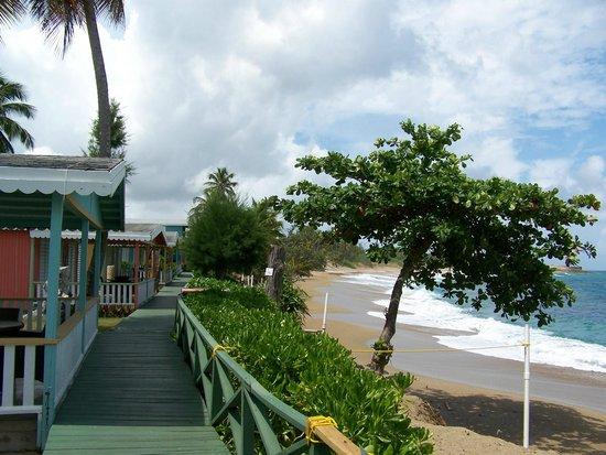 Parador Villas del Mar Hau:                   Ocean front villas