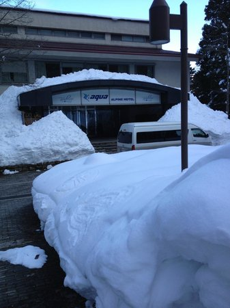 Aqua Alpine Hakuba :                   hotel entrance