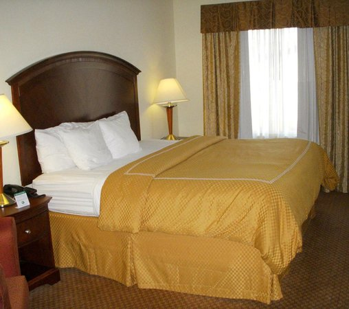 Comfort Suites Indianapolis Airport: Comfy king bed