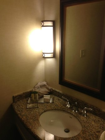DoubleTree by Hilton - Washington DC - Crystal City: faucet