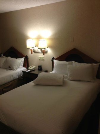 DoubleTree by Hilton - Washington DC - Crystal City: Beds
