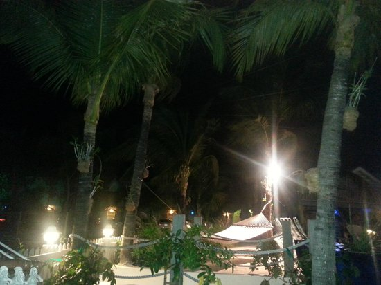 Ibis Bay Beach Resort:                                     night time view of the pool