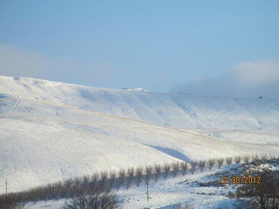Prosser Vintner s Village: hills