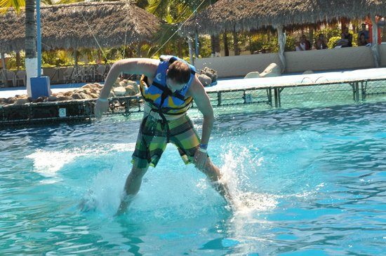 Aquaventuras park:                   Robot Dance on a dolphin