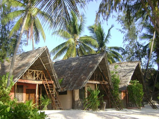 Evergreen Bungalows: Small Size Bungalows