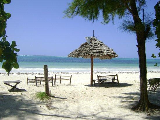 Evergreen Bungalows: Beach