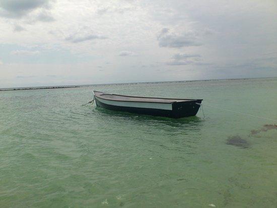 كوكس كينتو سولى بوتيك هوتل:                   Lancha en espera de navegante                 