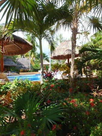 Mahekal Beach Resort:                   Gardens @ Mahekal