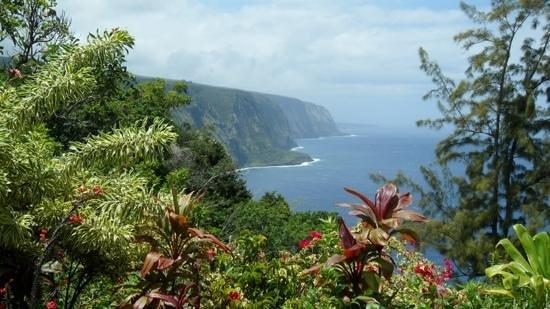 Waipio Na'alapa Trail: waipio coastline