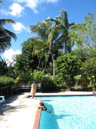 La Finca Vieques: Vue de la piscine
