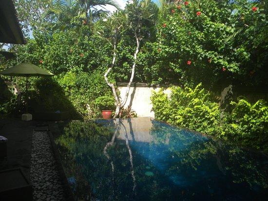 โรงแรมกามูล่าซาเนอร์:                   Pool - 3-bed villa
