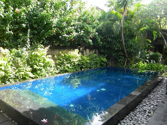 Kamuela Villas and Suite Sanur:                   Private pool in 3-bed villa