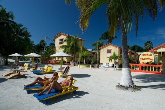 Tropical Paradise Hotel: Our Beach...