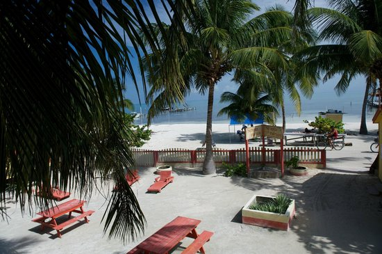 Photo of The Tropics Hotel Caye Caulker
