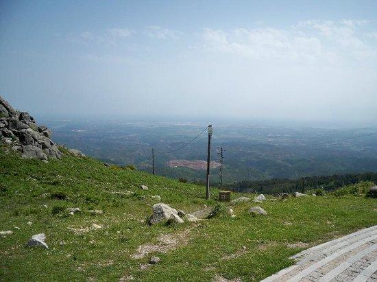 Alferce:                   foia mountain