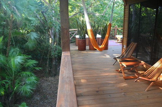 Hamanasi Adventure and Dive Resort :                   deluxe treehouse