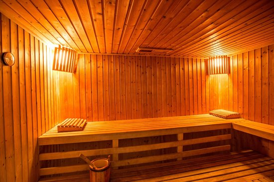 Fordoun Spa Hotel Restaurant: Sauna