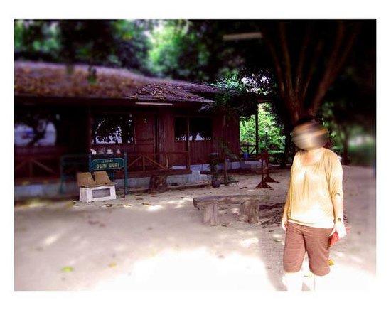 Pulau Bidadari Resort:                   cottage lanai duri-duri