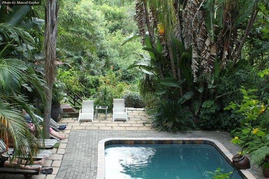 Old Vic Traveller's Inn:                   Pool