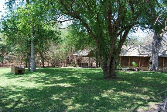 Camp Nkwazi: Campsite