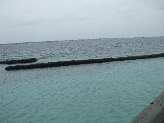 馬爾代夫庫魯巴度假村照片