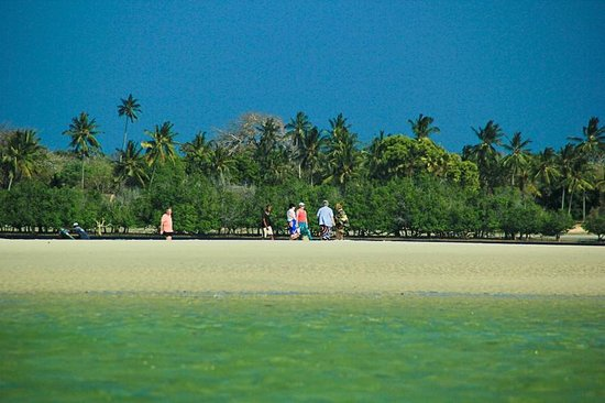Mwazaro Beach Mangrove Lodge: The beach