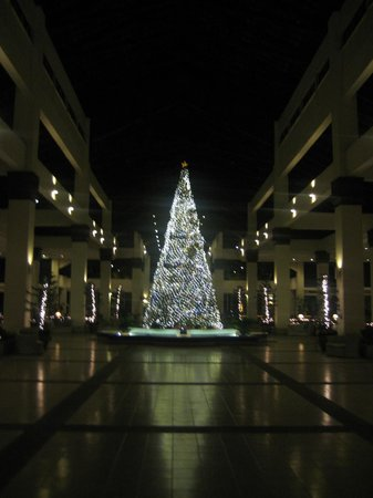 Sutera Harbour Resort (The Pacific Sutera & The Magellan Sutera):                   Christmas Tree in Reception Area