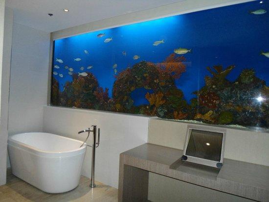 Hotel H2O:                   aqua supreme room