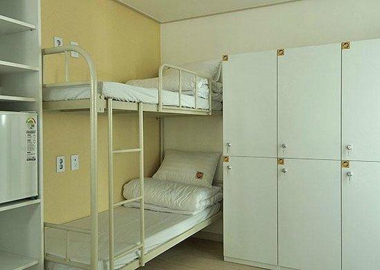 Yellow Brick Hostel:                   Dorm