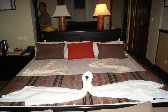 Preskil Beach Resort:                                     vu de la chambre